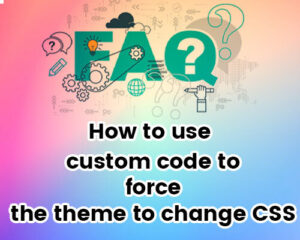 How-to-use-custom-code-to-force-the-theme-to-change-CSS